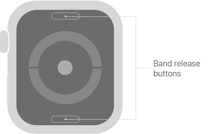 Apple Watch band release buttons on the back.