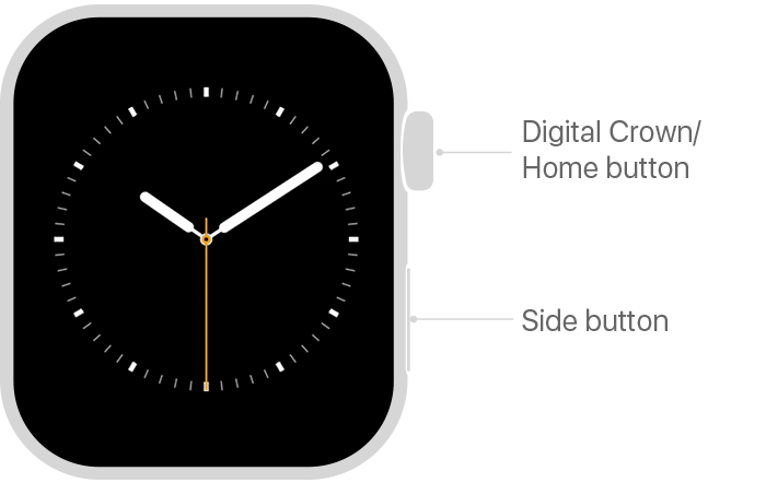 Apple Watch physical controls